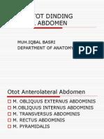 Otot Abdomen