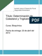 Informe de Bioquimica Corregido