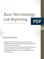 Basic Microbiology Lab Reporting gram staining