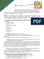 2 Clase Modificaciones Del Embarazo Dr Russo (1)