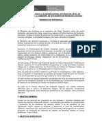 Tdr-estudio Del Nivel de Contaminacion Botaderos Rr Ss