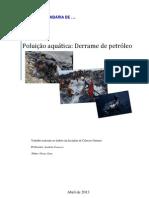 Poluição aquática