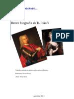 Breve biografia D. João V