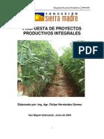Propuesta de Proyectos Productivos Integrales