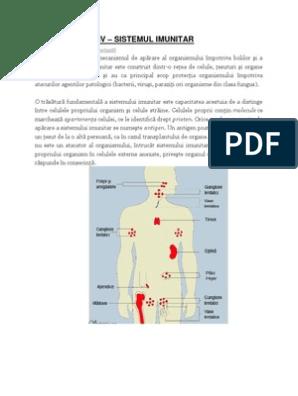 imunitatea organismului uman)