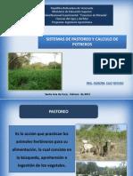 sistemadepastoreo-120312203718-phpapp01