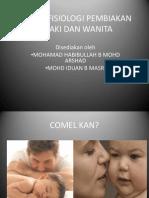 Sistem Fisiologi Pembiakan Lelaki Dan Wanita