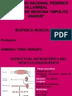 Biofisica Muscular Ok