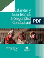 Estandares Seguridad Conductual