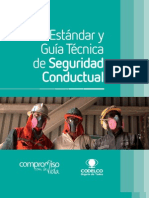 Estandares Seguridad Conductual