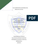 Informe de Laboratorio de Microbiologia (Cultivos)