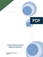 CONCENTRACION EN MEDIOS DENSOS.docx