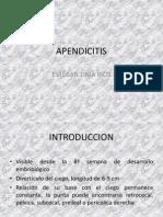 20110519 Apendicitis