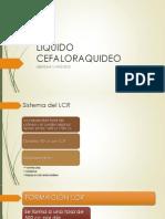 LIQUIDO CEFALORAQUIDEO.pptx