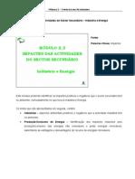 Módulo4- Sector Secundario