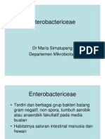 Bbc215 Slide Enterobactericeae