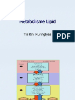 Metabolisme Lipid.ppt