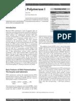bacterial DNA pol I.pdf