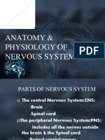 Anatomy &Physlgy f Nervous System