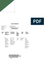 SAP PIS (3)