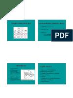 Microsoft Powerpoint - Aula 2009_figura Complexa de Rey