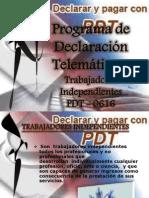 Programa de Declaración Telemática12