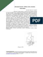 artigo_unisinos_2005_v3