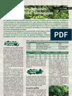Agrumes Agri Bio