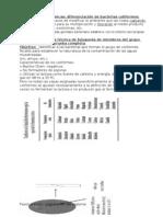 Pruebas Bioquimicasteoria (1)