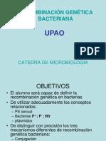 recombinacingenticabacteriana-