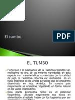 El tumbo.pptx