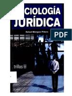 MÁRQUEZ PIÑERO. Rafael, SOCIOLOGÍA JURÍDICA . Trillas, Méx. 2006