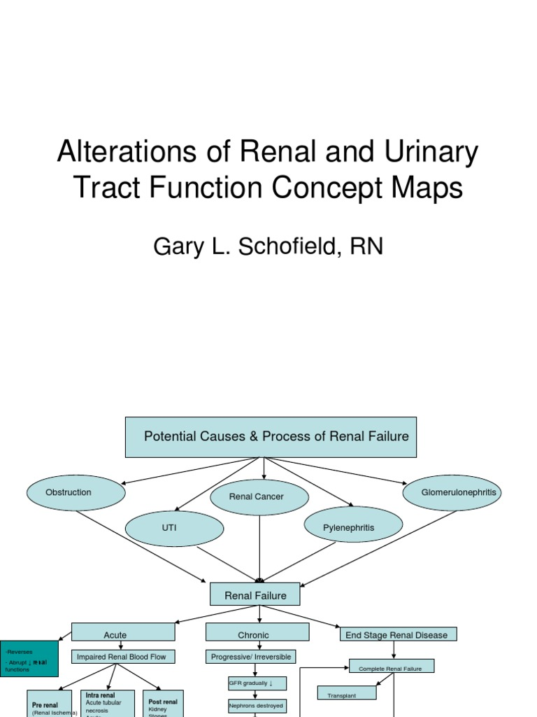 Renal Failure Concept Map.Renal Concept Map Kidney Urological Conditions