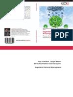 Libro Ingenieria Electoral Iva y Auxiliadora