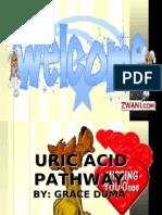 permasalahan urin by grace dum2