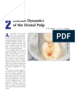 2 Disease Dynamic of Dental Pulp
