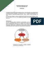 Cap IV Petrologia