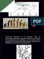 4._Métodos_de_estudio_de_DNA
