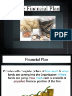 10. the Financial Plan