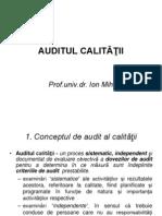 Curs Audit de Calitate Dec2010