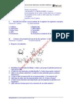 65931213 Biologia Selectividad Examen 6 Resuelto Castilla La Mancha Www Siglo21x Blogspot