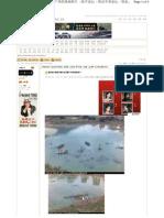 据说是打捞福州被冲走武警尸体的现场照片