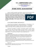 130131 - Prezentare Hotel Silva