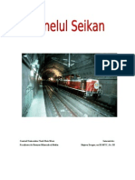 Tunelul Seikan