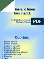 albinele_olumefascinanta