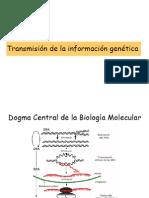 3 Introduccion genetica microbiana