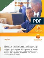 Inspecciones de Puestos de Trabajo - Positiva 2009 (32 Diapositivas)