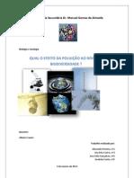 relatório BG - poluição (nºs 1,3,4 e 5)