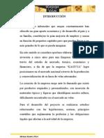 Capitulo i Tesis 11 04 2013