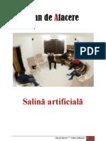 Plan Afacere Salina Artificiala